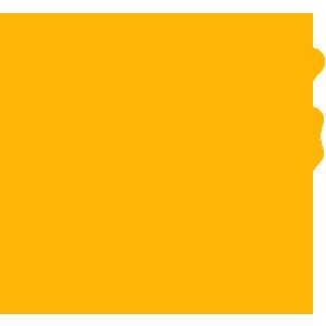 UDI Unique Device Identification
